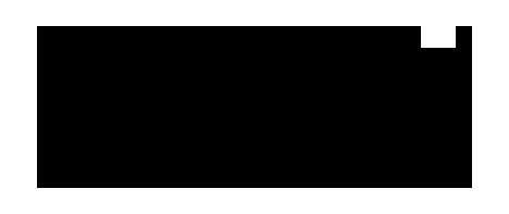 bagghy_logo